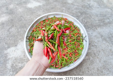 Red & green chillies on the aluminum tray - stock photo