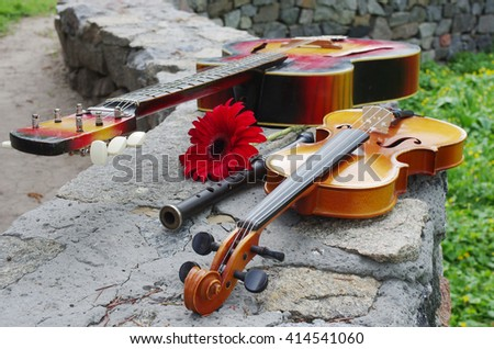 Red guitar, violin, flute and flowers - stock photo