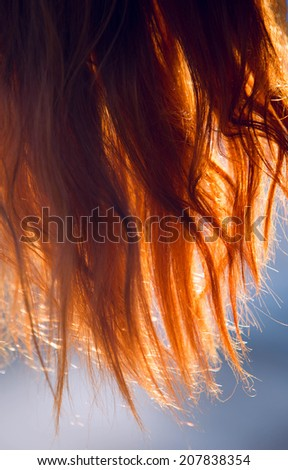 Red hair on natural background