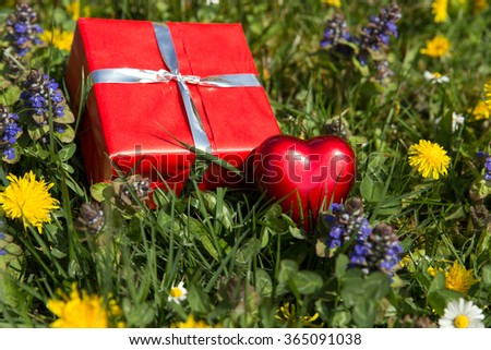 red heart and gift on a spring meadow - stock photo