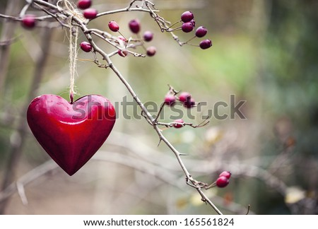 Red heart Christmas decoration hanging on the tree - stock photo