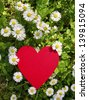 Red heart in daisy meadow - stock photo