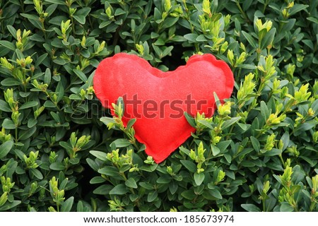 Red heart in green , save the nature - stock photo
