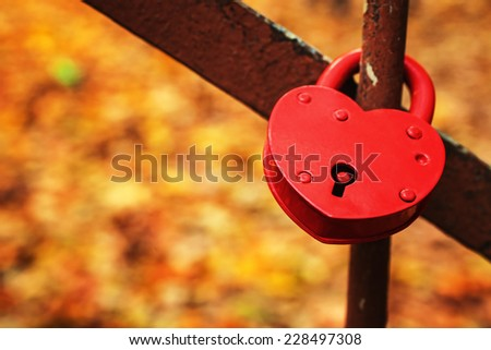 Red heart lock against the background of  yellow autumn foliage   - stock photo
