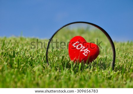Red heart on green field in the bright day