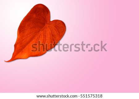 red heart shape leaf on gradient background.