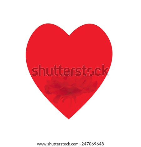 red heart with rose inserted on white background - stock photo
