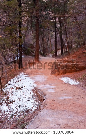 Red hiking path in Zion's National Park - stock photo