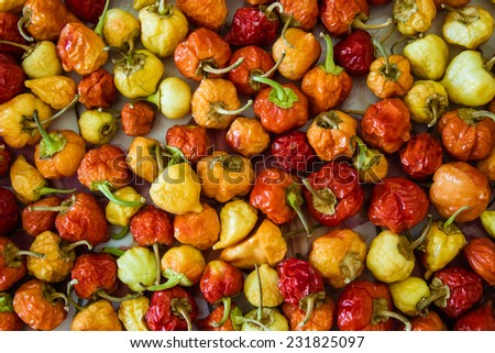 Red hot cherry peppers over white wooden background