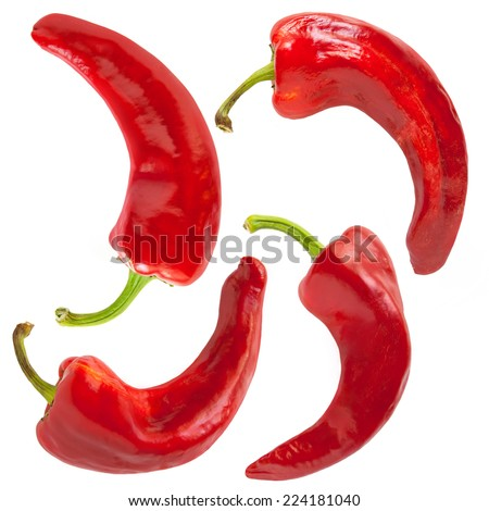Red hot chili peppers on the white background  - stock photo