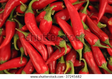 red hot chilly peppers - stock photo