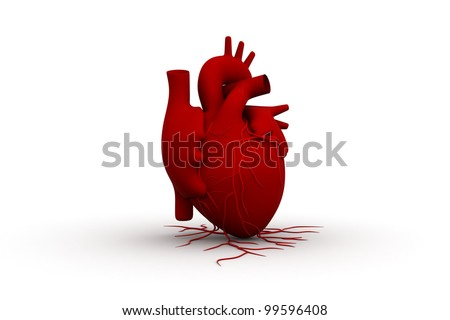 RED human heart - stock photo