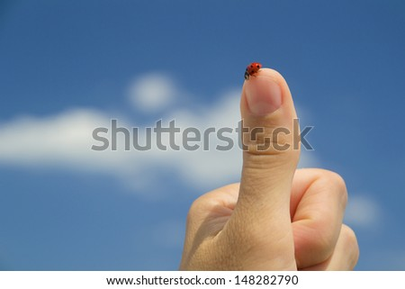 Red ladybird standing on the tip of the finger of a human hand making 'thumbs up' sign against blue sky with white clouds on a clear summer day - stock photo