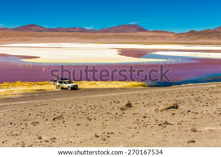 Red Lagoon (Lagoa Colorada) in Bolivia, South America - stock photo