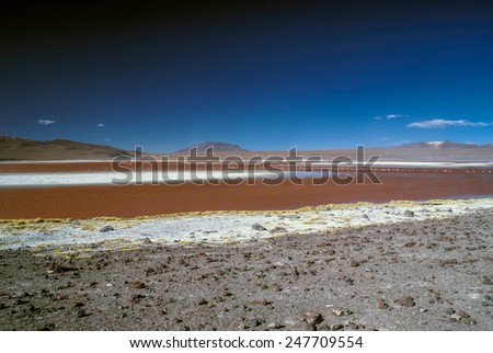 Red lake dotted with flamingos in bolivian desert near Salar de Uyuni - stock photo
