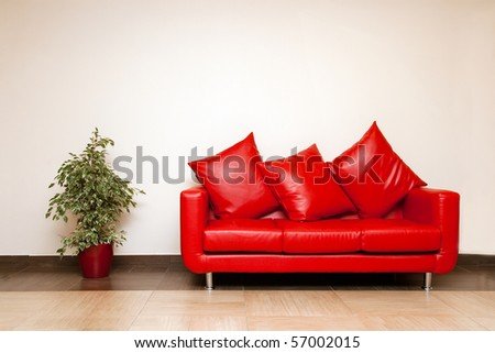 Red Leather Sofa With Pillow, Plant In A Pot Near