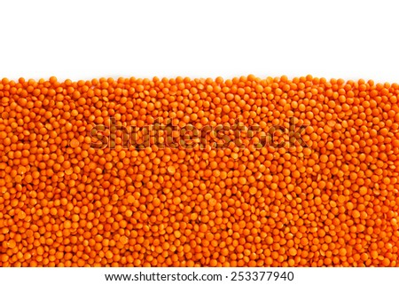 Red lentils , isolated on white background , copy space - stock photo