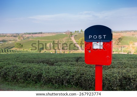 Red letterbox with green tea plantation background - stock photo