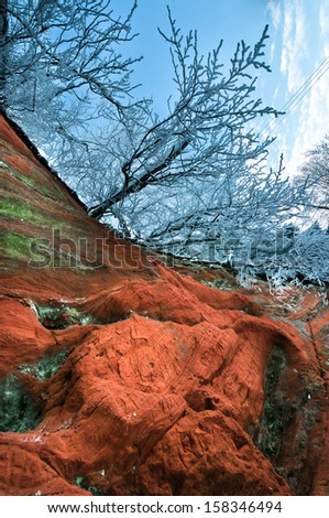 Red limestone with frozen branches on top vertical view - stock photo