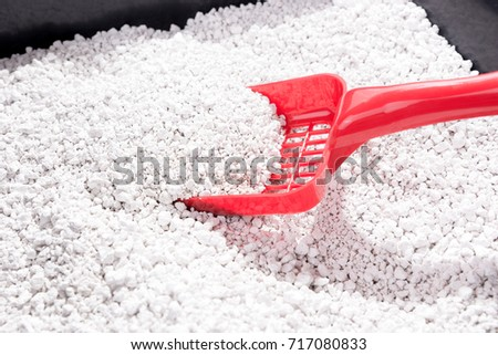 Red litter scoop inside cat litter box