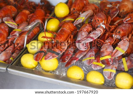 Red Lobster for sale at the Washington DC Fish Market - stock photo