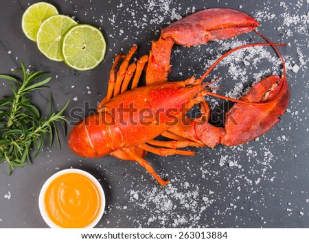 Red lobster on black trace - stock photo