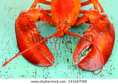 Red lobster on wooden table close-up - stock photo
