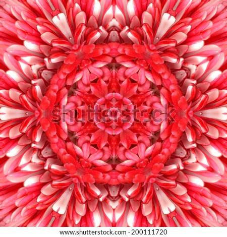 Red Mandala Concentric Flower Kaleidoscope Center. Kaleidoscopic Design Pattern - stock photo