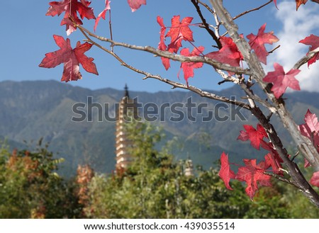 Red maple leaves and ancient towers   - stock photo