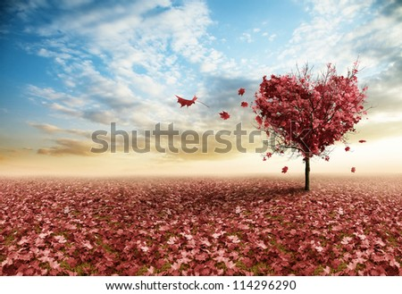 Red maple tree in shape of a heart - stock photo