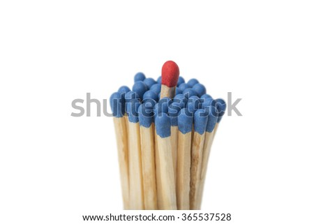 Red Match sticking out of a group of blue matches isolated on white background - stock photo