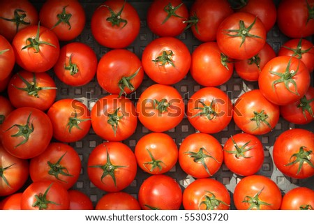 Red natural tomatoes in the basketful