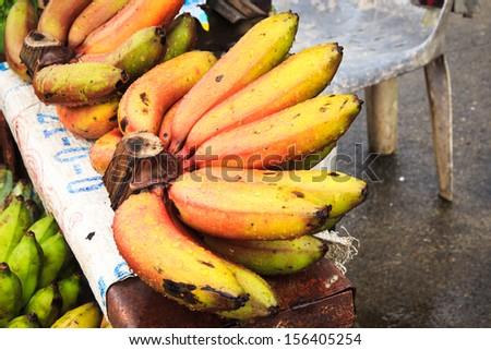 Red Nino Bananas. - stock photo