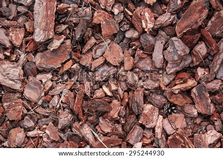 Red old wood chip from tree, nature texture. texture background - stock photo