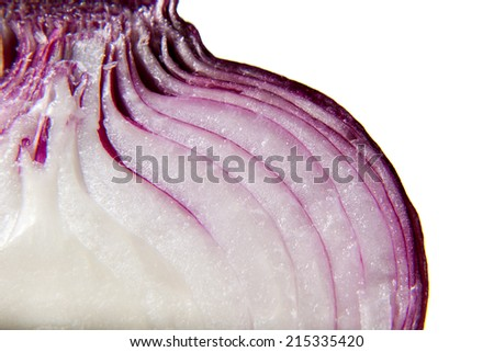 Red onion closeup isolated in white background