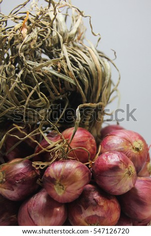 red onions texture