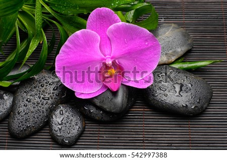 Red orchid and bamboo leaf with wet stones on mat background