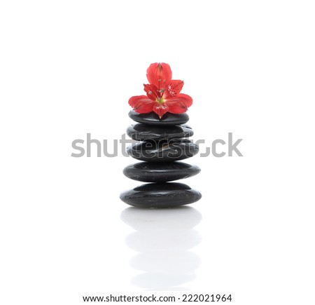 red orchid and stacked black stone  - stock photo