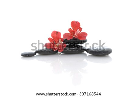 red orchid and stones  - stock photo