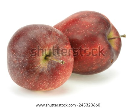 Red organic apple on a white background - stock photo