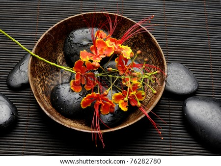 Red peacock flower in bowl with zen stones - stock photo