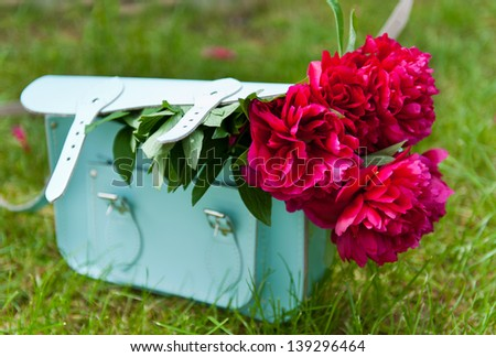 Red peonies in a blue handbag on the green grass