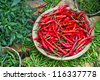 Red pepper basket. - stock photo