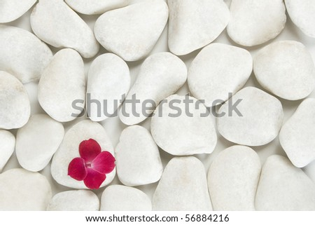 red petals on white pebble background, relaxation and meditation concept - stock photo
