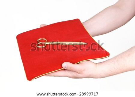 red 	 pillow with scissors in their hands
