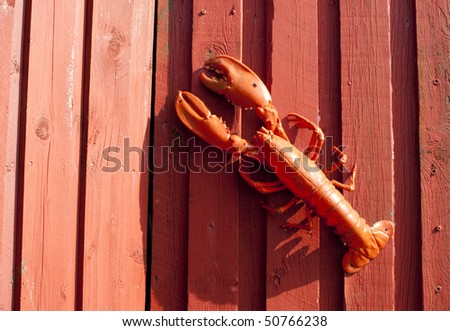 Red plastic lobster on red timber wall.