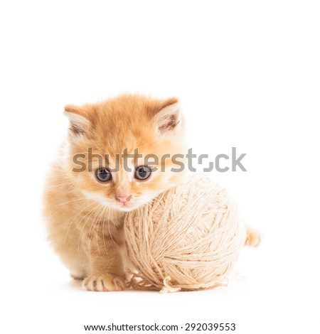 Red playful kitten with beige ball of yarn isolated on white