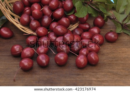 Red plums scattered from wicker basket, close-up plan