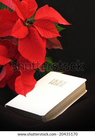 red poinsettia, white bible and room for copy