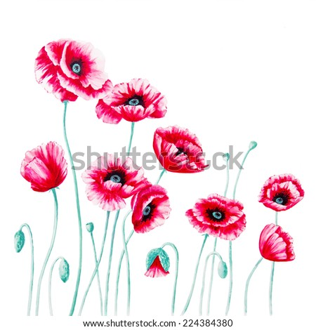 Red Poppies are against a white background in an acrylic painting on canvas as the left panel of a diptych.